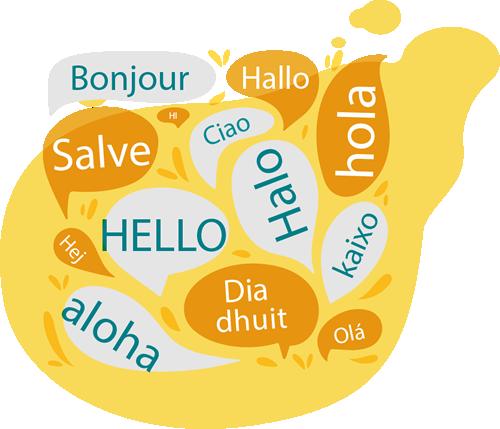 Çoklu Dil Modülü
